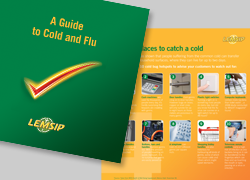 lemsip cold and flu guide